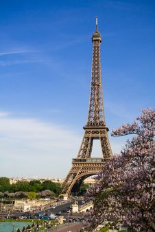 Free The Eiffel Tower. Spring Time Royalty Free Stock Photos - 8396928