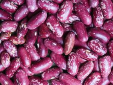 Free Beans Royalty Free Stock Images - 8397459