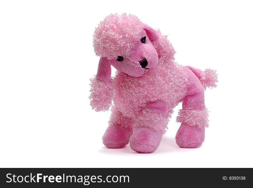 Pink Puppy Plush Dog Free Stock Images Photos 8393138
