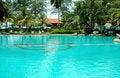 Free Swimming Pool Royalty Free Stock Photo - 843305