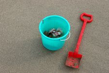 Free Sand Excavation And Shells Stock Photos - 842943