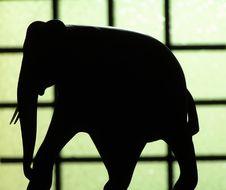 Free Elephant Royalty Free Stock Image - 843356