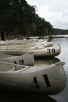 Free Paddle Boats Royalty Free Stock Photos - 843618
