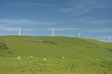 Free Windfarm Royalty Free Stock Images - 845349