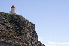 Free Light House At Taiaroa Head Royalty Free Stock Photography - 845717