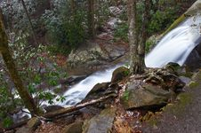 Free Laurel Falls Stock Photos - 846103