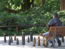 Free Park Chess Royalty Free Stock Photography - 847597
