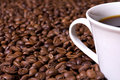 Free Coffee Beans And Coffee Cup Stock Image - 8400741