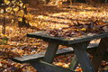 Free Fall Picnic Table Royalty Free Stock Image - 8402446