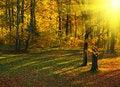 Free Autumn In The Park Stock Photos - 8406703