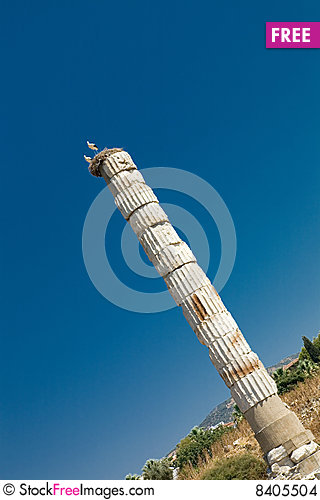 Free The Temple Of Artemis Stock Images - 8405504