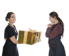 Free One Girl Make Present To Another Stock Photos - 8400683