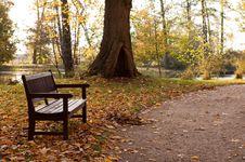 Free Autumn Tree Royalty Free Stock Photography - 8402227