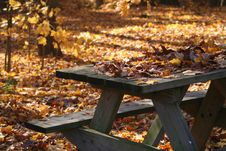 Fall Picnic Table Royalty Free Stock Image