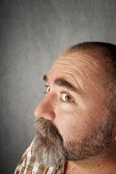 Free Profile Closeup Of Man In His 40s Stock Photography - 8403922