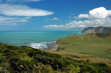 Free Beautiful Coastline In New Zealand Stock Images - 8404034
