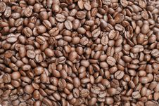 Free Roasted Coffee Beans Royalty Free Stock Photos - 8404248