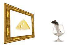 Free Rat Royalty Free Stock Images - 8405739