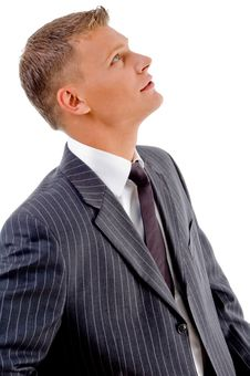 Free Side Pose Of Young Businessman Looking Upward Stock Photo - 8407690