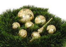 Free Christmas Tree Stock Image - 8407961