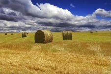 Free Haystacks On Yellow Field Stock Image - 8408221