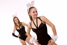 Two Sexy Playgirls With Bunny Ears Isolated Royalty Free Stock Photography