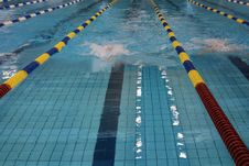 Free Swimming Competition Royalty Free Stock Photography - 8412507