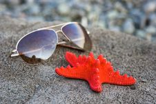 Starfish And Glasses Royalty Free Stock Photos