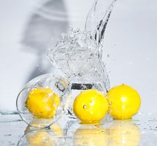 Free Lemon With Water Royalty Free Stock Photography - 8417397