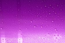 Free Pink Water Drops Royalty Free Stock Images - 8417679