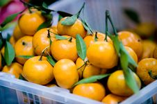 Free Tangerines For Sale Royalty Free Stock Images - 8417839