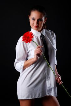 Free Young Woman With Flower Royalty Free Stock Photo - 8418415