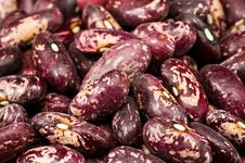 Free Kidney Beans In Wooden Dish Royalty Free Stock Photo - 8418705