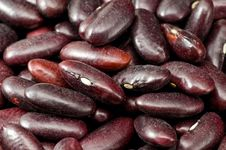 Free Dark Red Kidney Beans Stock Photo - 8418970