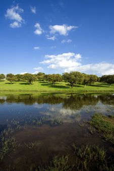 Free Spring Landscape Stock Images - 8419374