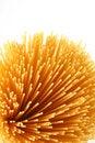 Free Spaghetti Stock Image - 8420751