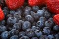 Free Organic Fruit Stock Image - 8424891