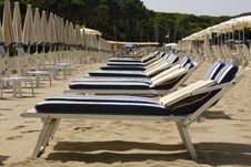 Free Beach Chairs Lined Up Stock Photo - 8420480