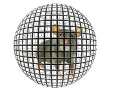 Free Rat Stock Photography - 8420702