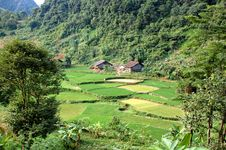 Free Valley Landscape In Vietnam Royalty Free Stock Image - 8420776