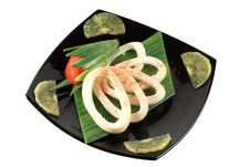 Free Squid Stock Images - 8420874