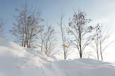 Free Winter Landscape Royalty Free Stock Images - 8421839
