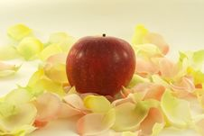 Apple With Aromatic Rose Leave Stock Photos