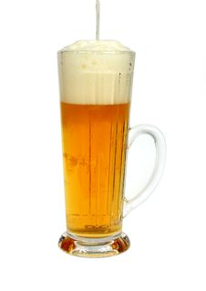 Free Beer Mug Stock Photo - 8424580