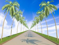 Free Road To Heaven Concept Stock Images - 8424624