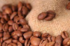 Free Coffee Grains Stock Image - 8425791