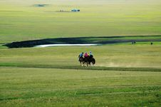 Free Prairie Stock Image - 8426991