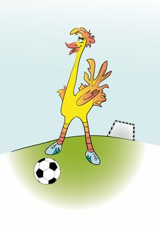 Free Ostrich Football Player Stock Photography - 8427262