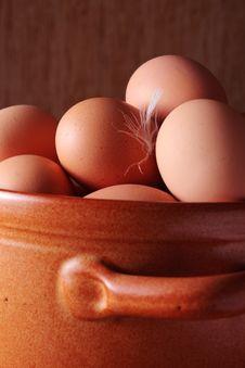 Free Eggs Stock Image - 8428121