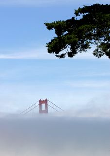 Free Foggy Day At The Golden Gate Bridge Royalty Free Stock Image - 8428706